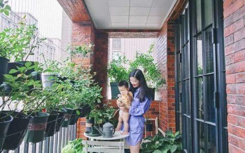 木木的陽臺花園