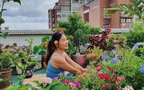 梅子的御花園