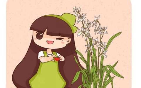 你養的未必是蘭花,種類多差別細,國蘭種類大科普