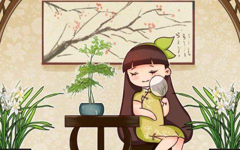 蘭花品種多,中國蘭花五大品種,你知道嗎?